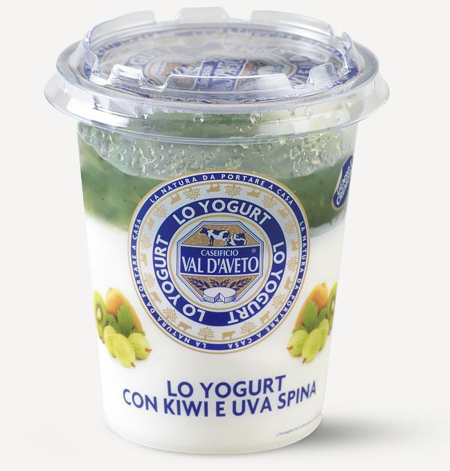 Yogurt Kiwi e Uva Spina Val d'Aveto